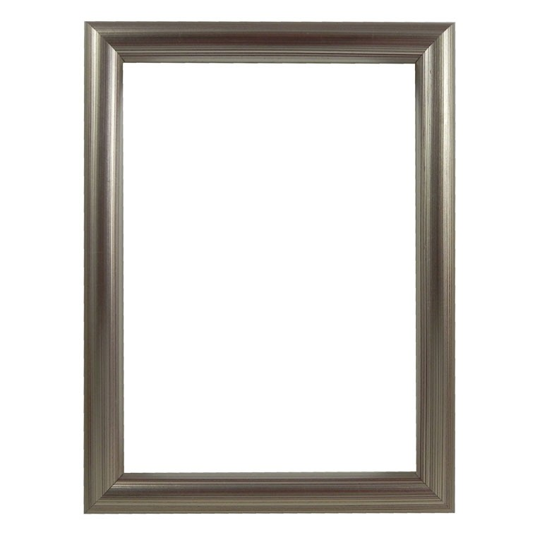 Picture Frame Bull Nose Silver