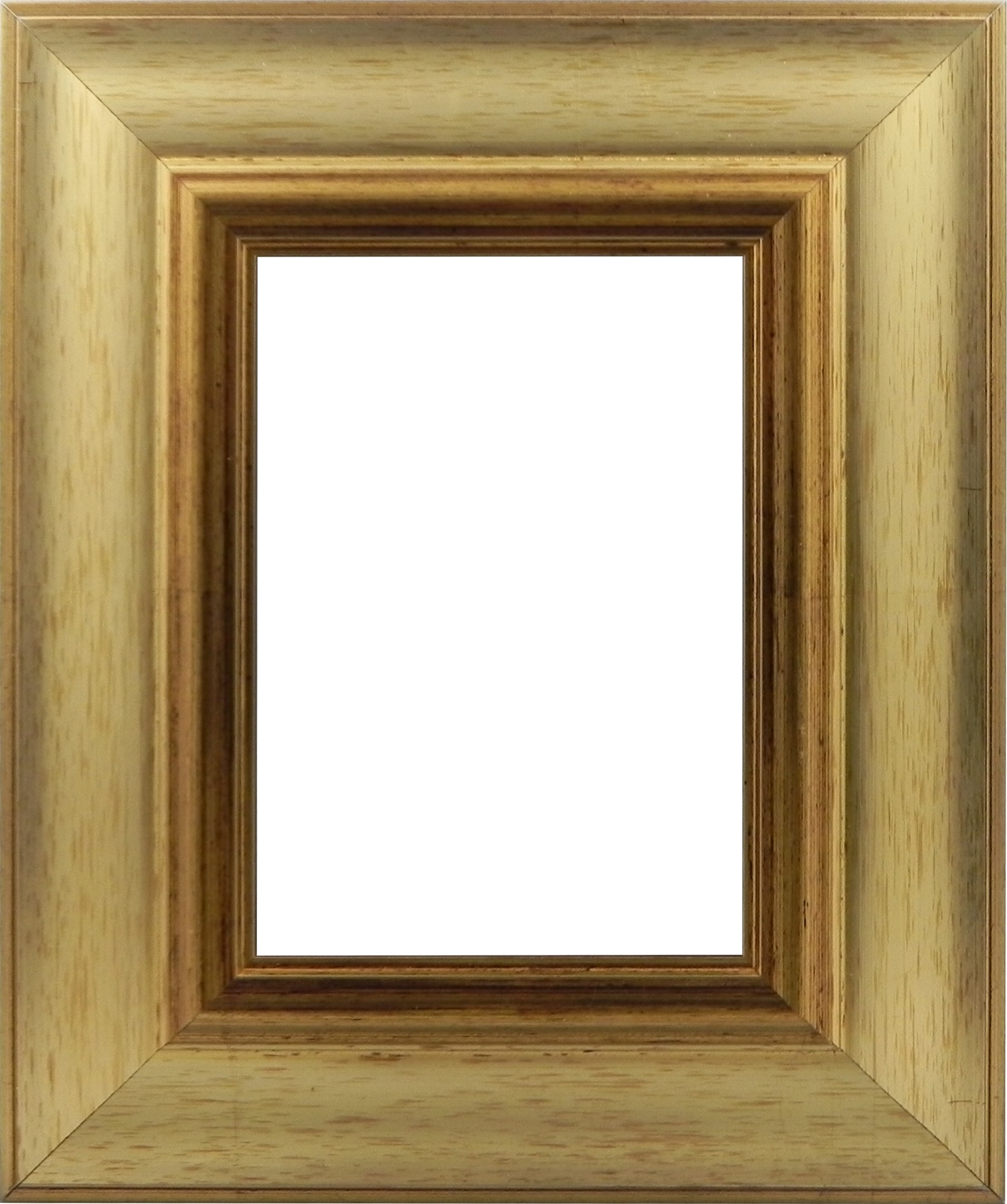 Picture Frame Modern Gold