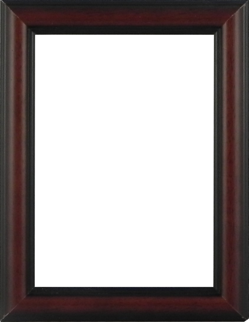 Picture Frame Dome Brown Slim