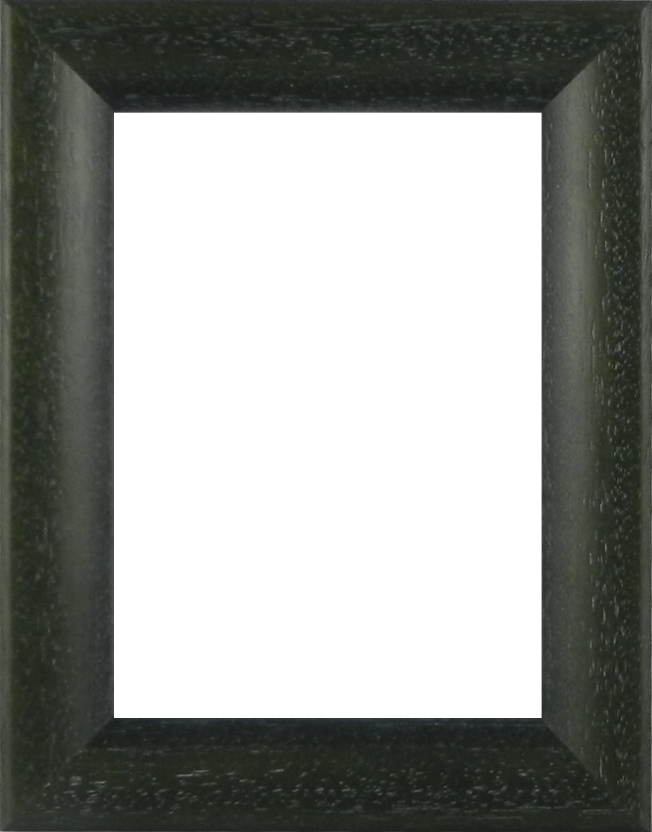 Picture Frame - Bevel Washed Green