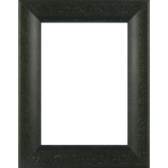 Picture Frame Bevel Washed Green